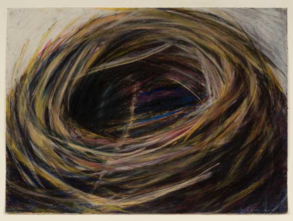 a pastel drawing of a bird's nest