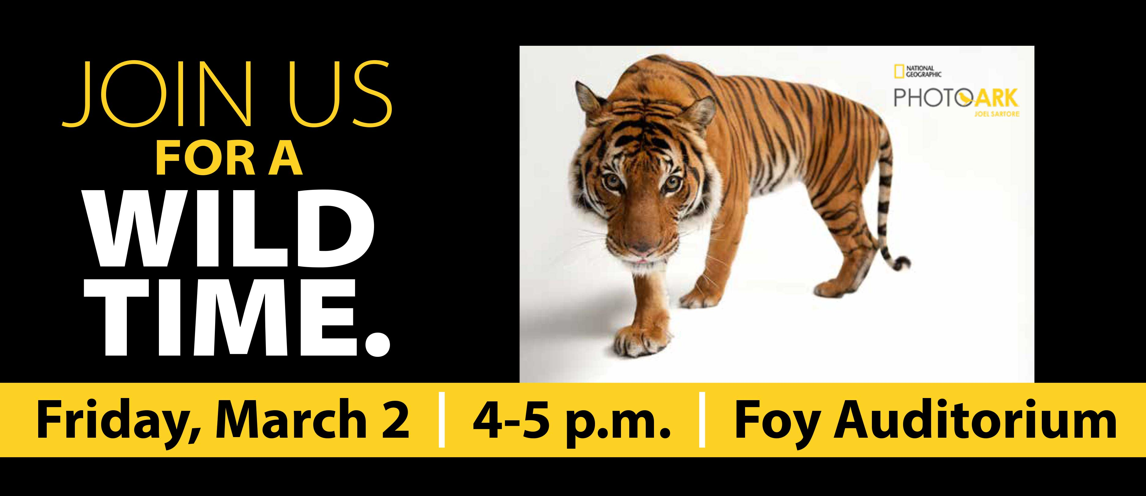 Graphic with information of March 2 lecture with Joel Sartore. © Photo by Joel Sartore/National Geographic Photo Ark. An endangered Malayan tiger, Panthera tigris jacksoni, at Omaha Henry Doorly Zoo. For more go to NatGeoPhotoArk.org.