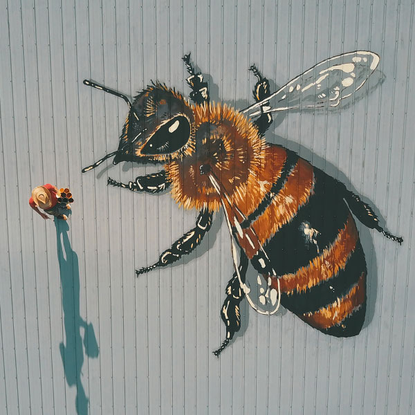 Aerial view of artist Matthew Willey, The Good of the Hive, painting a mural on top of a barn.