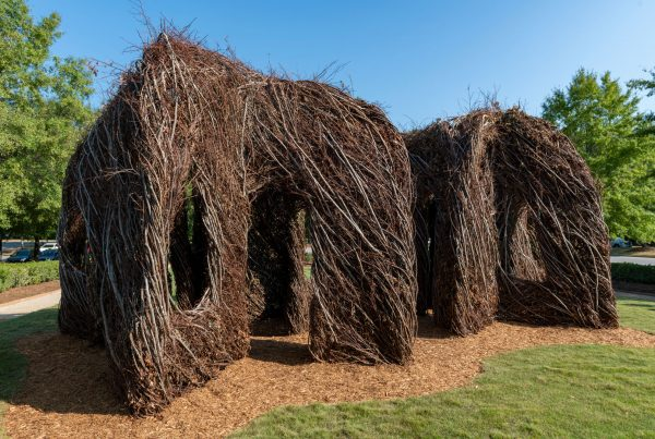 Structure made from sweet gum vines