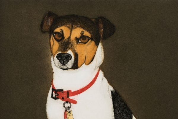Portrait of a small Jack Russell Terrier
