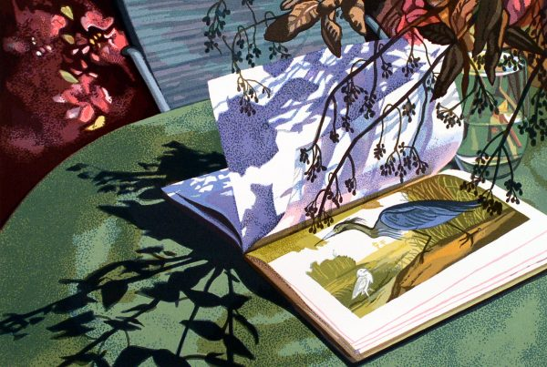 Warm light and shadows move across a book, opened to a picture of a heron.