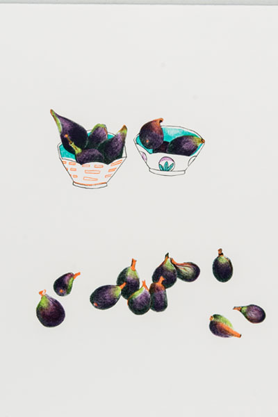 Beth Van Hoesen (American, 1926–2010) Figs, 1977 Color lithograph on Rives BFK paper Edition: 17/50 19 x 15 inches (sheet)