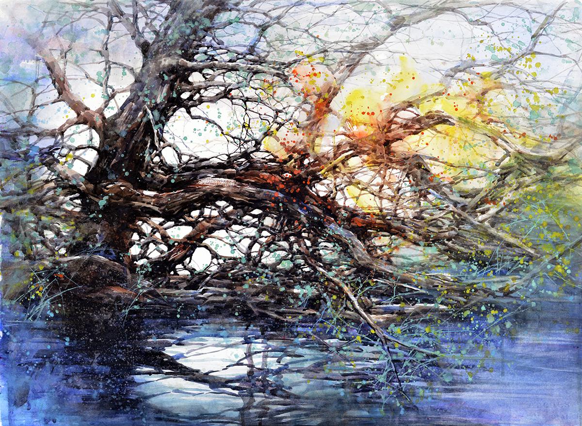 Z. L. Feng (Radford, VA) Roots