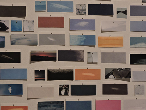 Allyson Comstock, The Vanishing Colors of Antarctica, 2017, Chalk pastel on paper, photographs, and map pins, Variable dimensions