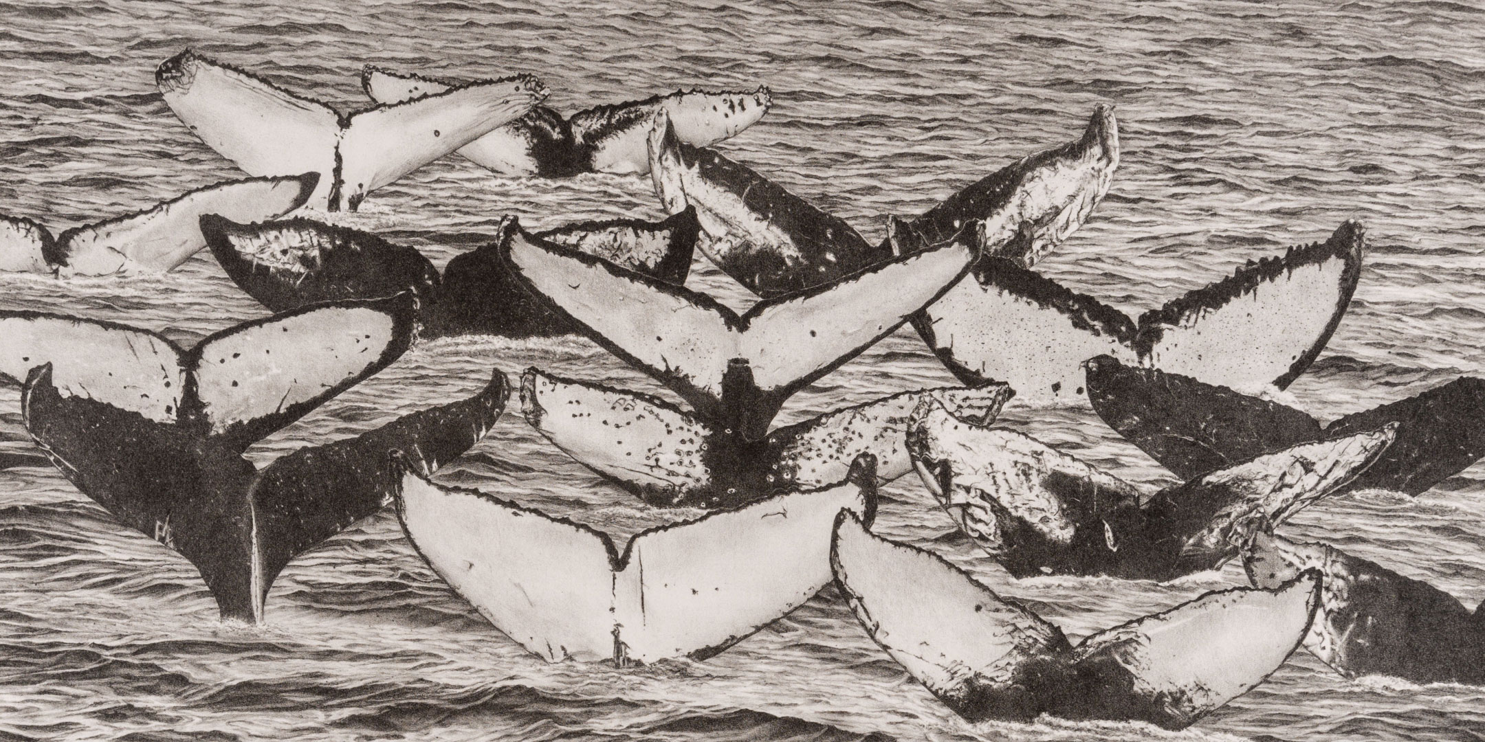 Cynthia Osborne (American, b. 1947) Tail Count, 2003 Lithograph and serigraph Jule Collins Smith Museum of Fine Art, Auburn University; gift of Joe and Julie Sanders 2018.13.09