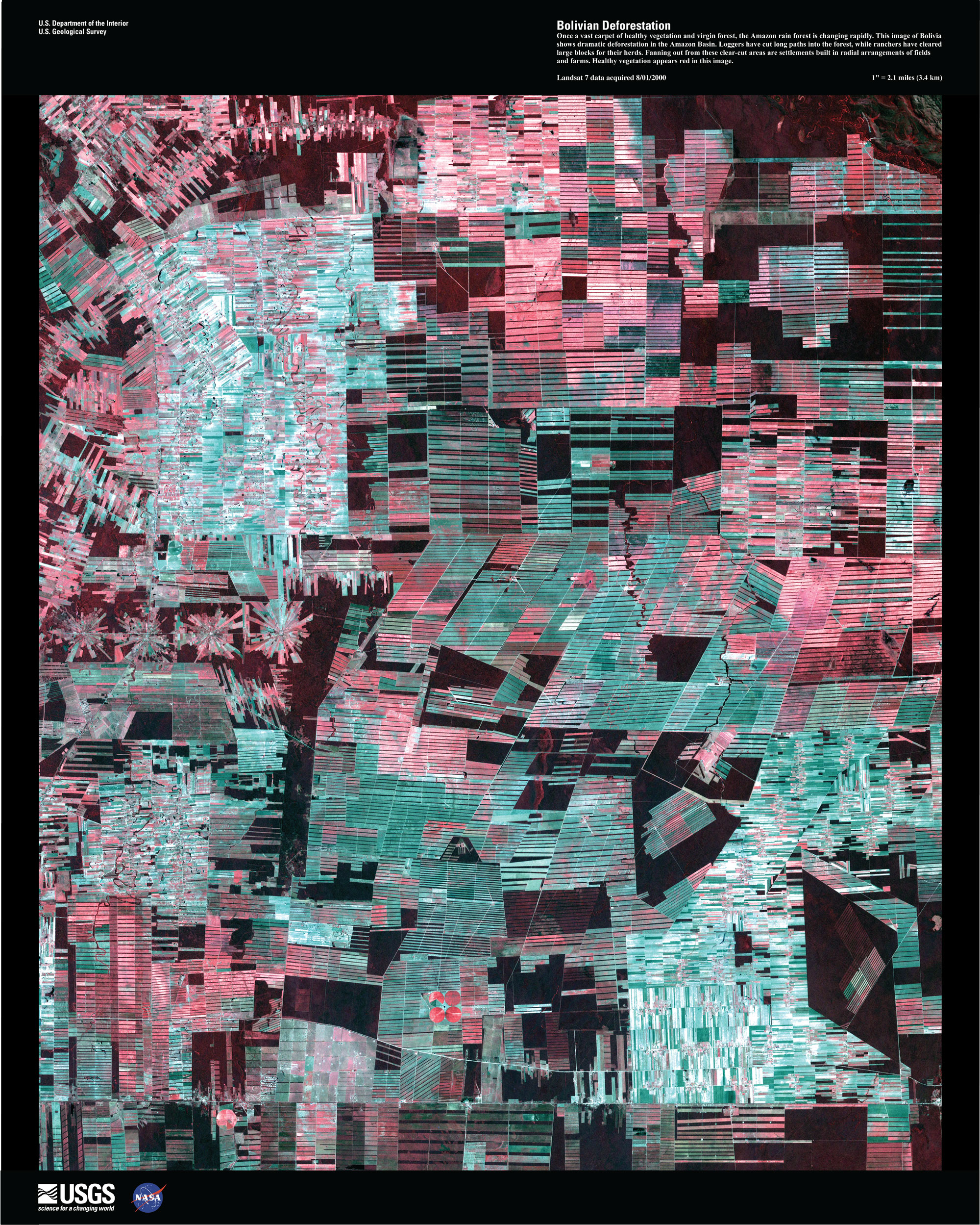 Satelite image of Bolivian Deforestation